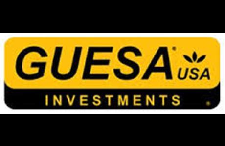 Guesa Investments